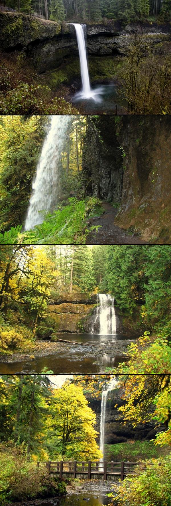 Silver Falls State Park Oregon Map.Silver Falls State Park Camp Hike Horseback And Swim Near