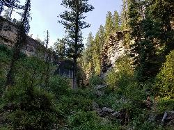 Looking up the Canyon courtesy of endovereric↗