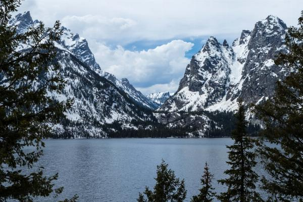 Jenny Lake courtesy of cteicheira↗