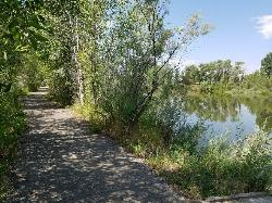 Path along the pond courtesy of endovereric↗