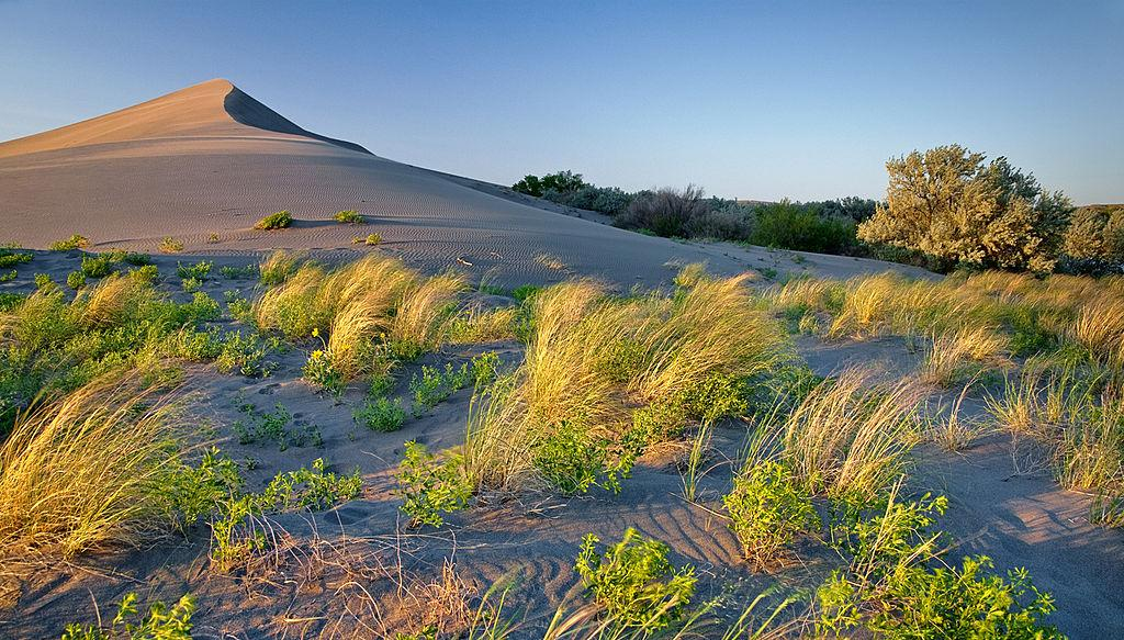 Golden Hour Bruneau Sand Dunes courtesy of Charles Knowles↗