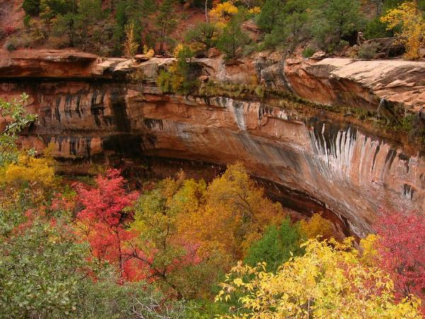 Fall Colors At Lower Emerald Pool