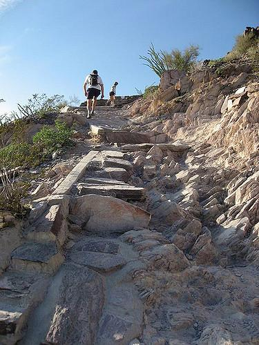 North Mountain National Trail courtesy of Mike Lee↗