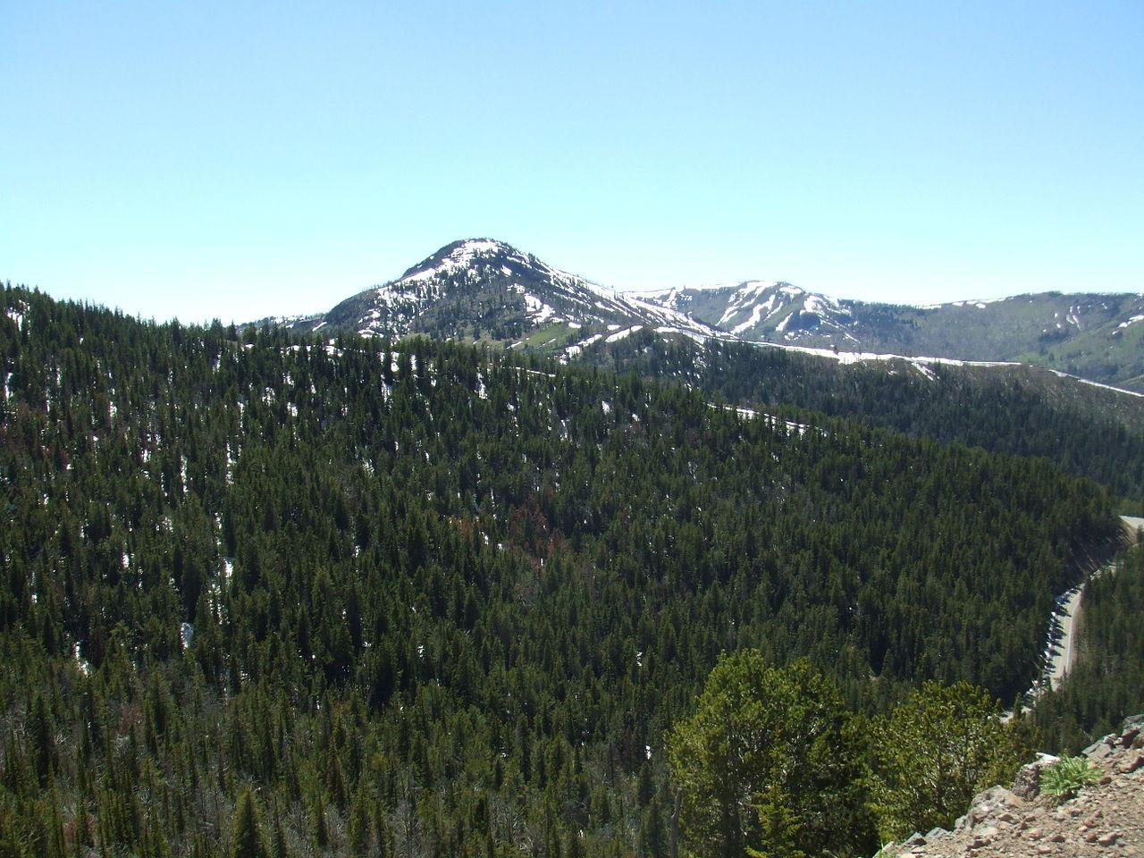 Dunraven Peak Viewed From Mount Washburn Trail courtesy of Thomson200↗